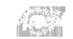 logo_naxos_nlanco